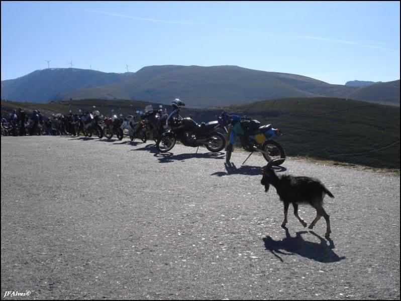 Trails pelo Marão 09_02_15-MCP-Trails_Marao-040