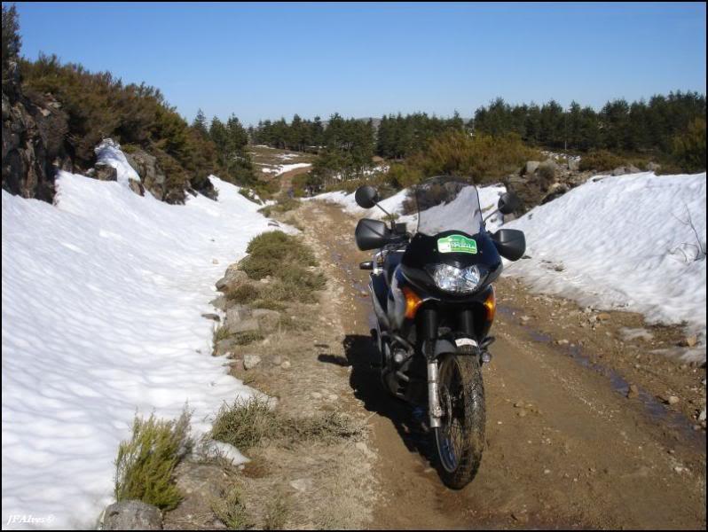 Trails pelo Marão 09_02_15-MCP-Trails_Marao-109