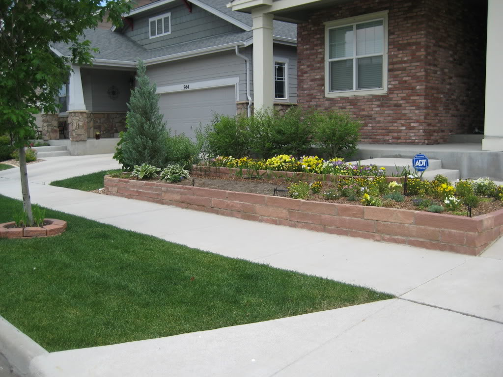 Claudia's home front  Landscaping001