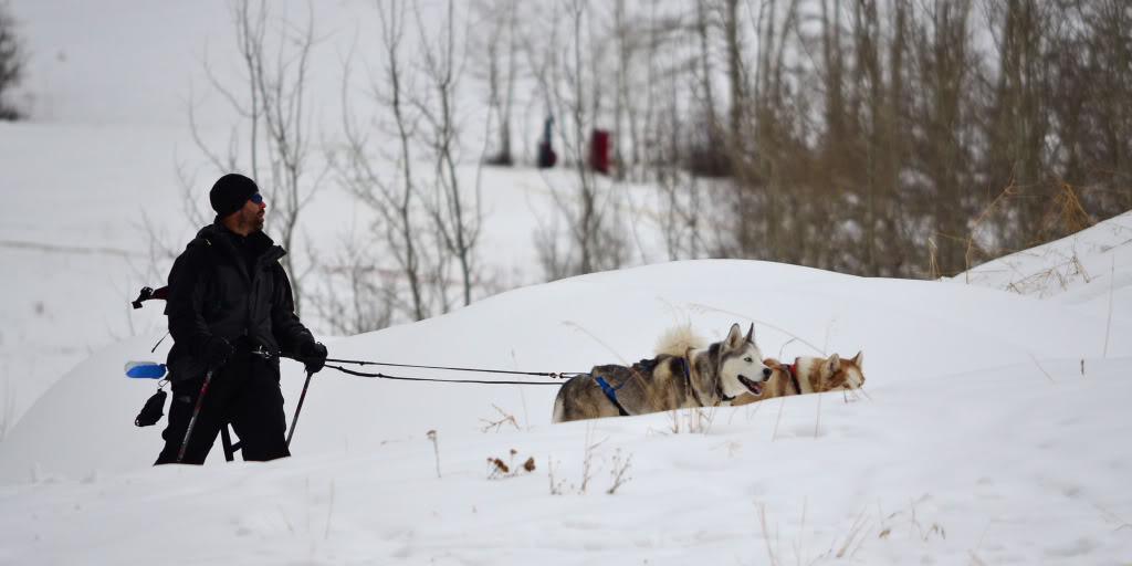 Storm's first snowshoeing trek! SnowshoeingattheRitz031