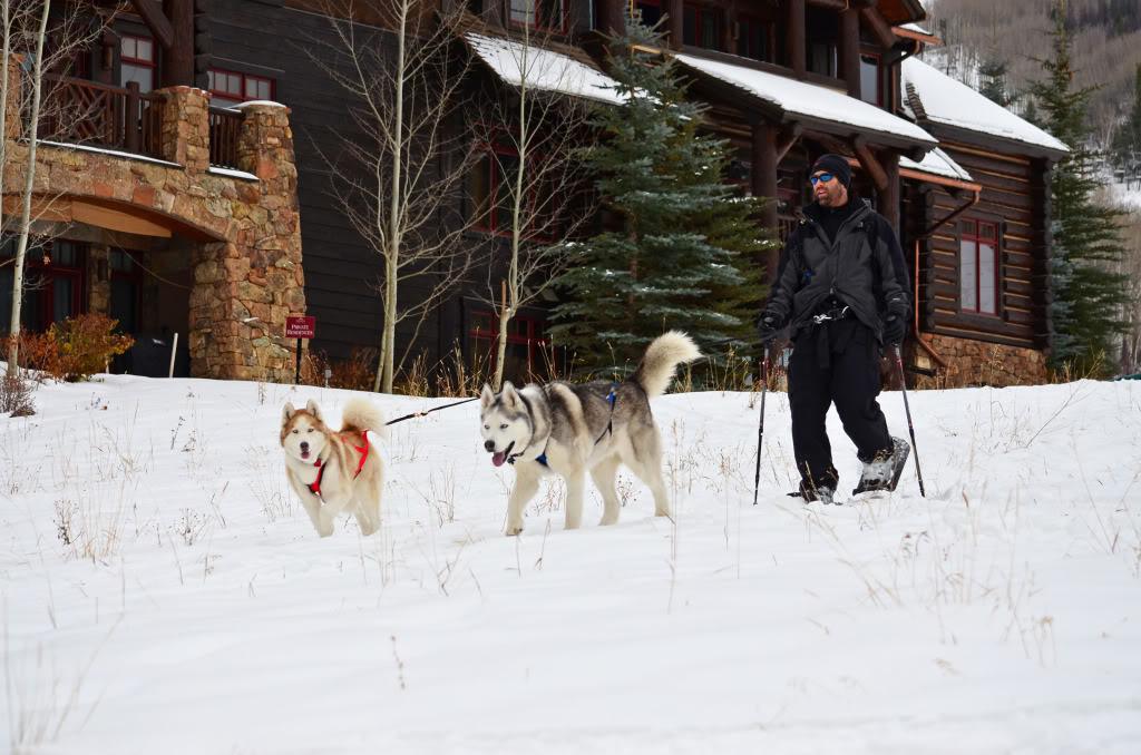 Storm's first snowshoeing trek! SnowshoeingattheRitz035