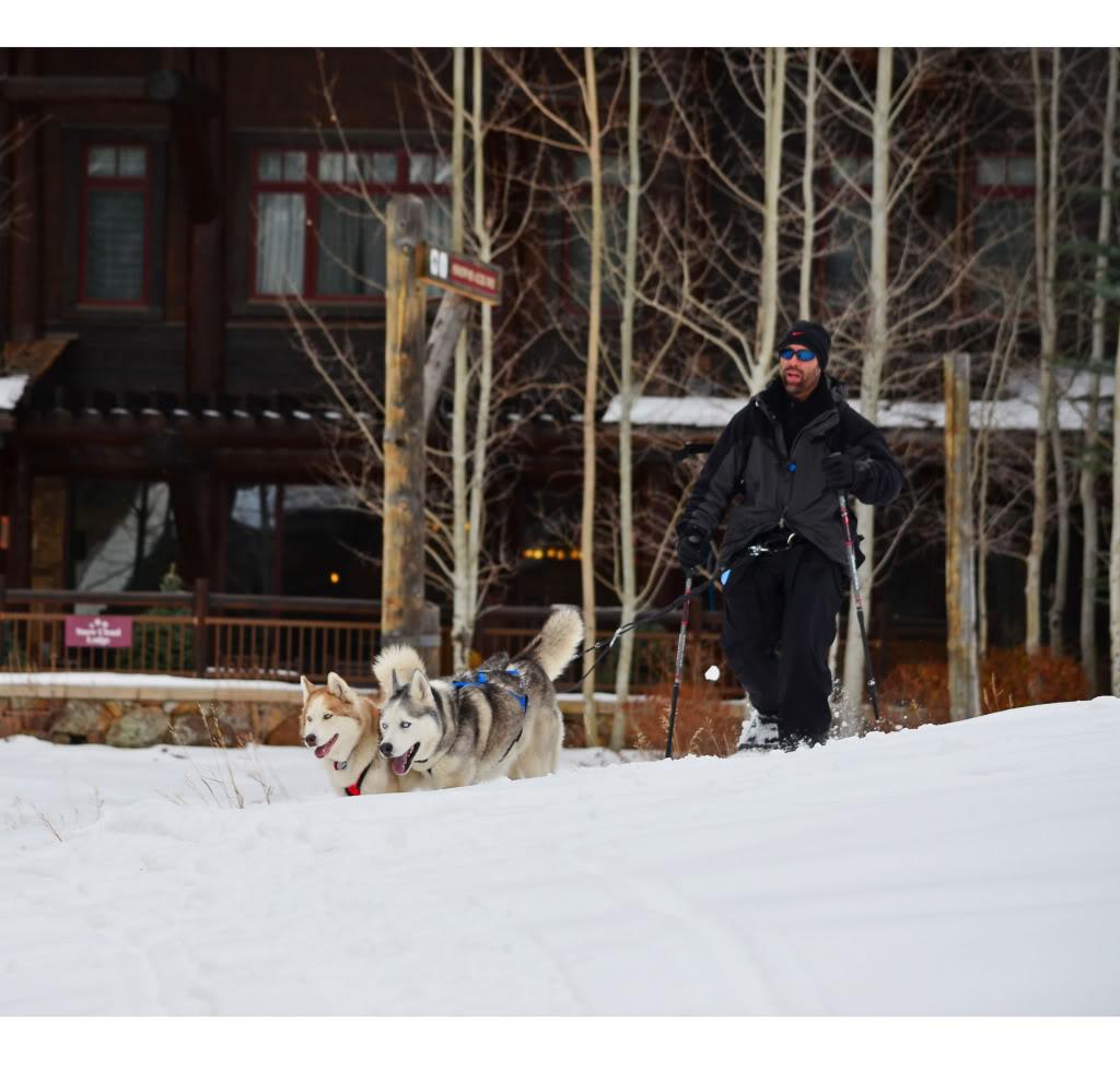 Storm's first snowshoeing trek! SnowshoeingattheRitz036