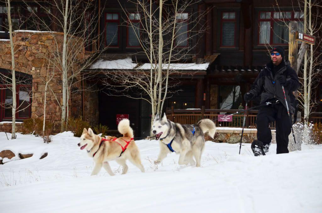 Storm's first snowshoeing trek! SnowshoeingattheRitz040