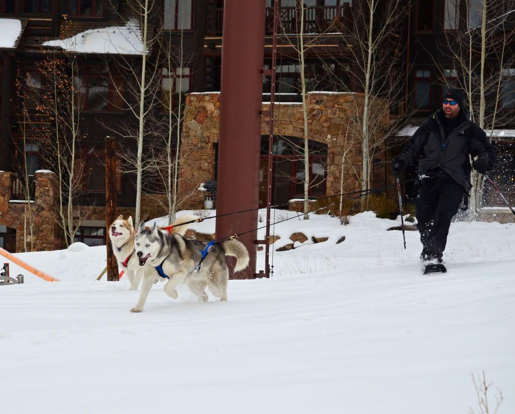Storm's first snowshoeing trek! SnowshoeingattheRitz042