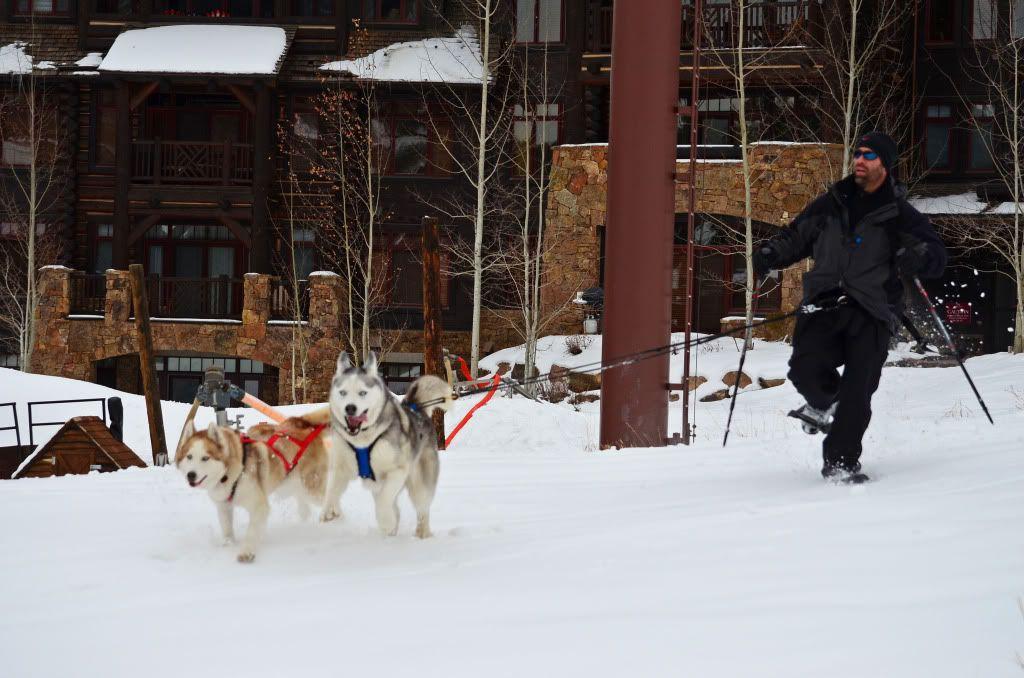 Storm's first snowshoeing trek! SnowshoeingattheRitz044