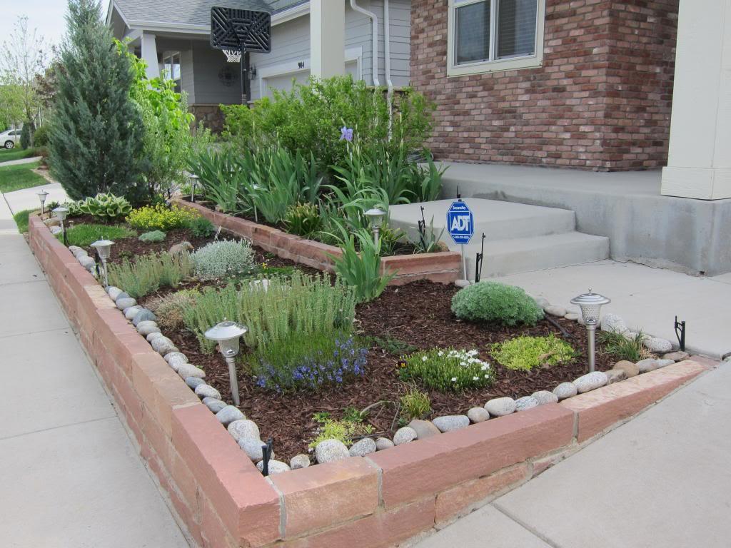 Claudia's home front 2013 Garden2013002