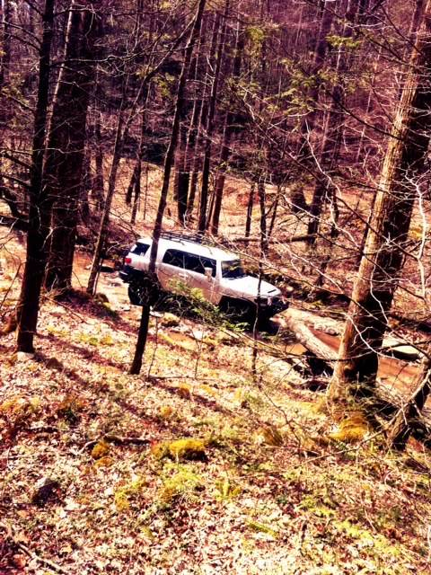 Pics and Vids from The Richland Road Trail 3/17/12 Photo2
