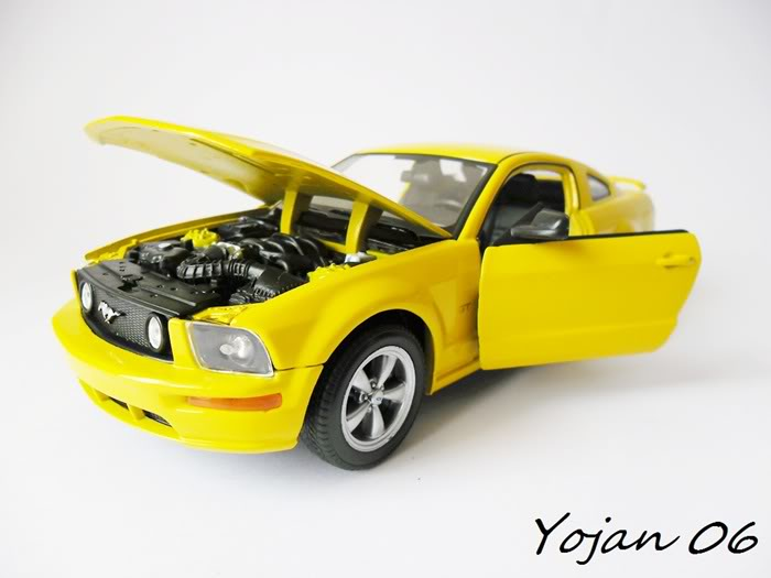 Ford Mustang GT 2005 - 1:24 SAM_0415