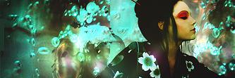 a estrenar los portafolios  2011 a 2017 Floral