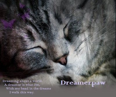 My heart is broken, thanks sister... [open] Dreamerpawsheet-2