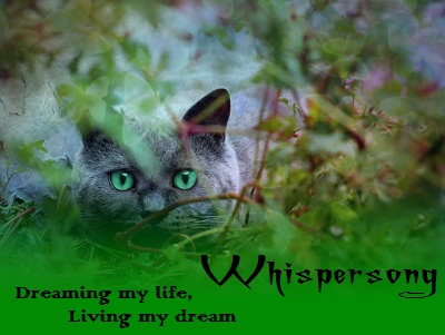 Dreams Whispersong