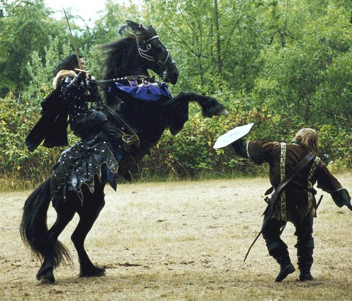 Bataille de Kulikovo  1380 -par Marco - Ca y est ! les Photos finales... - Page 2 Destrier-in-action_zps8f6cb4be