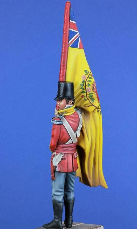 Bataille des quatre bras 1815 - 28th Foot - scénette ; suite et fin Photos finales - Page 2 IMG_4456_zpsedjvprkg