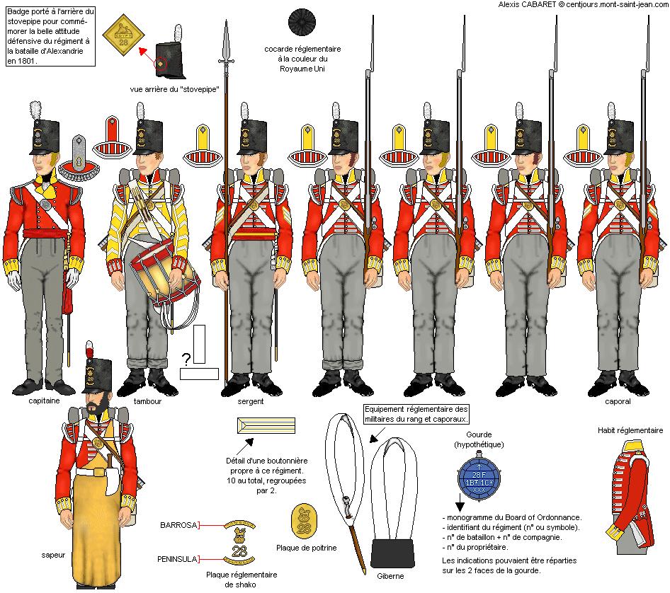 Bataille des quatre bras 1815 - 28th Foot - scénette ; suite et fin Photos finales Infanterie28grenadiers_zpszv6c8gdl
