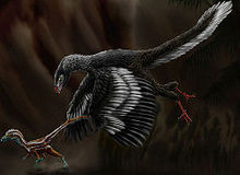 Dinosaurs and other Prehistoric Animals Archaeopteryx_lithographica_by_durbed_zpsemwokowp