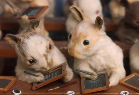The best museums are not always the biggest Walter-potter-the-rabbit-village-school-house-detail_zps6df5d0a3