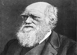 اسئه واجوبه نظرية داروين تحت المجهر  Images-5