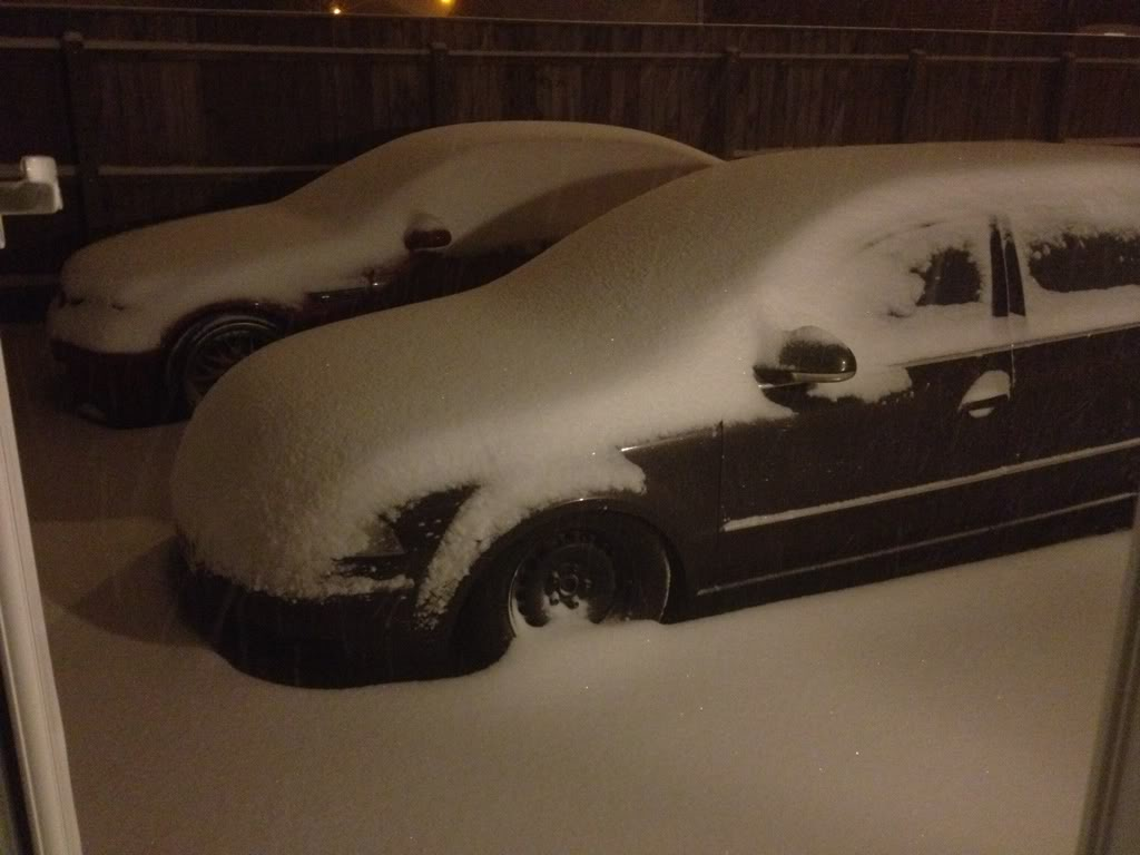 dubs in the snow F4c4fda0