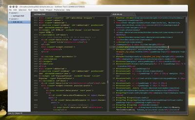 Ubuntu Sublime-text-2_double-pane