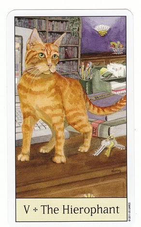 V/5 THE HIEROPHANT - CAT'S EYE TAROT 5TheHierophant-CatsEyeTarot_0004