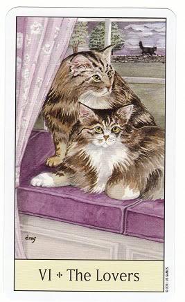 VI/6 The Lovers - Cat's Eye Tarot 6TheLovers-CatsEyeTarot_0002