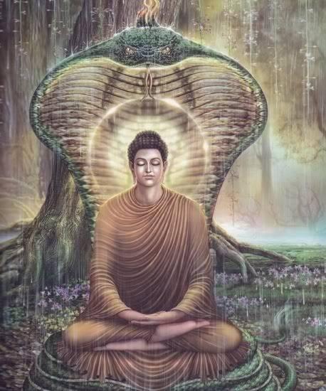 Cuộc Đời Đức Phật Qua Tranh Ảnh CuocDoiDucPhat18