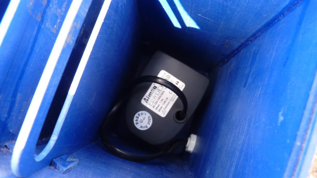 Reinicio la fiebre con nuevo acuario P1030142