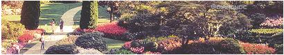 Lullaby Campament Jardines1