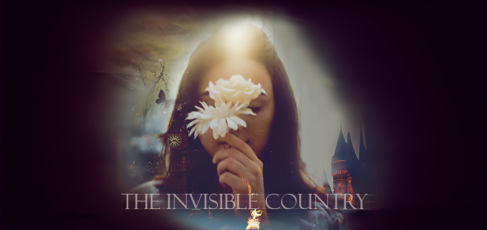The invisible country