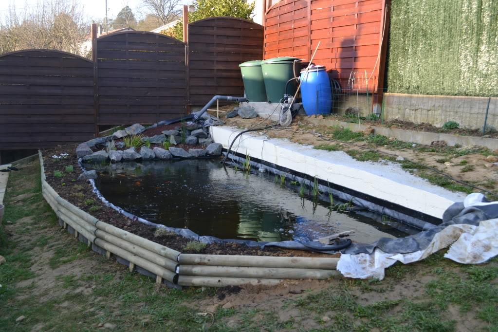 bassin de 10000 litre pour koi DSC_0010