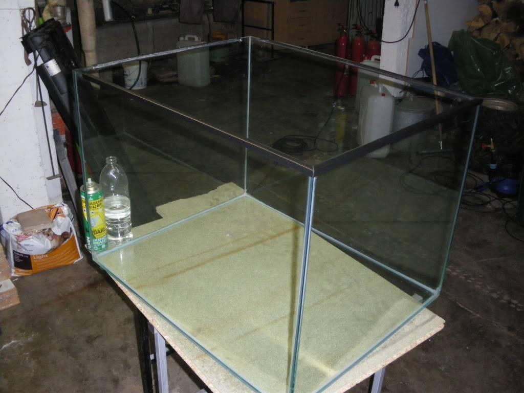 aquarium eau de mer IMGP1273