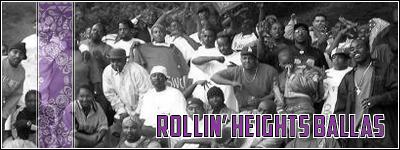Shade's Rollin' Heightz Ballas leader application. RHB