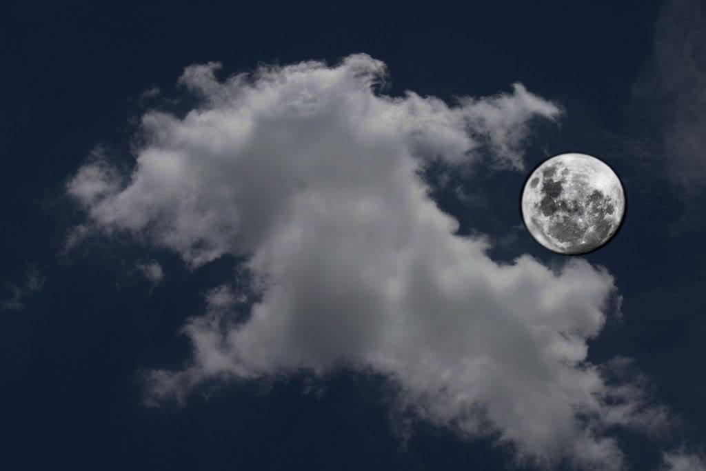 Foto da Lua. LuaNoite
