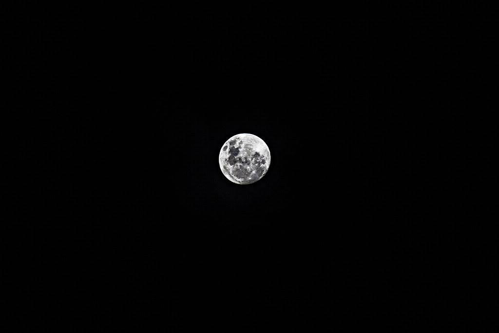 Foto da Lua. _MG_2935