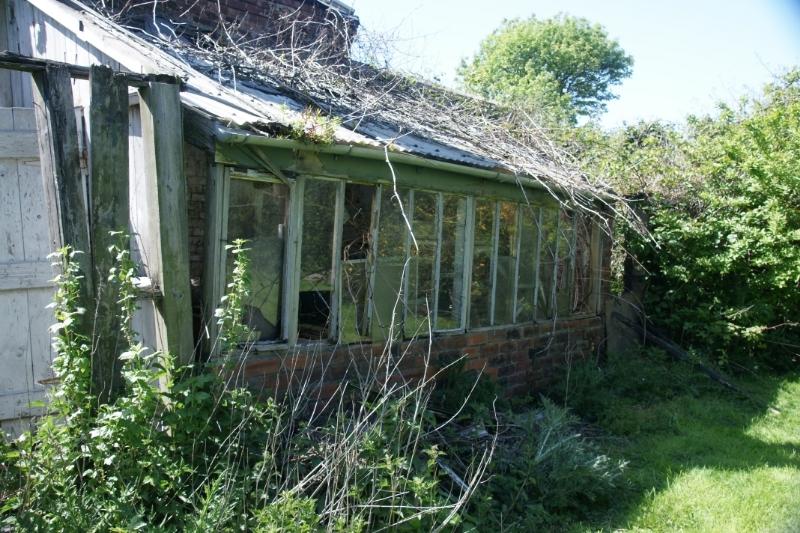 Greenhouse renovation DSC04488_zpsjcf85x54