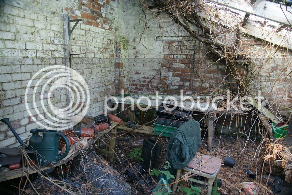 Greenhouse renovation DSC04494_zpsipeug7at