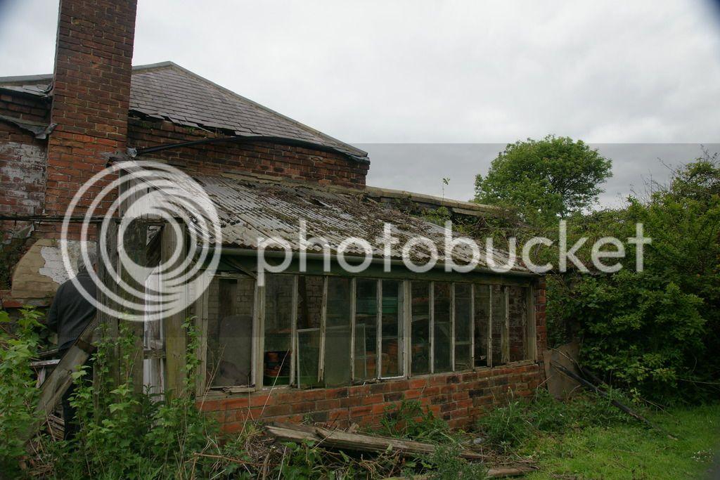 Greenhouse renovation DSC04506_zps4bwuqmjj