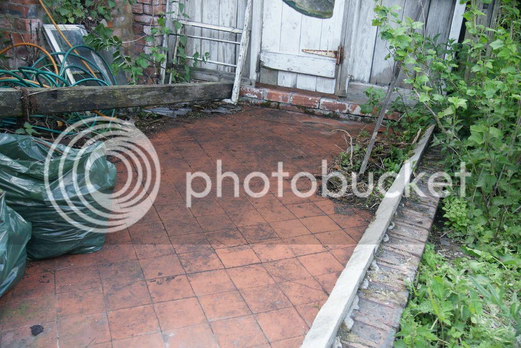 Greenhouse renovation DSC04592_zps4m71amdi