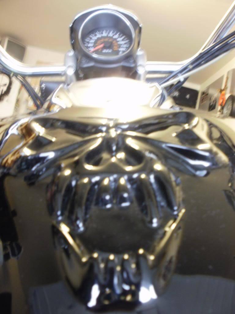 Suzuki Tank skull Mod on VZ800 P5260261