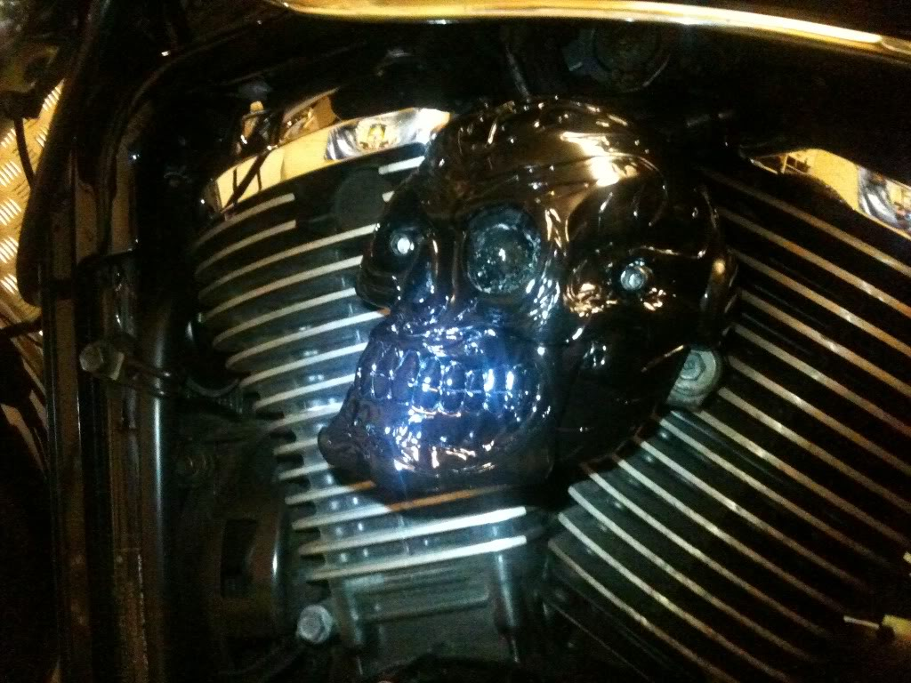 Skull One Off Pair Valve Cover on VZ800 Photo18