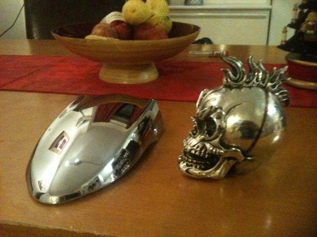 Speedo Skull on VZ800 Photo9