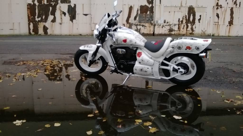 WTTR Poppyscotland Bike Temporary_zps134a1248