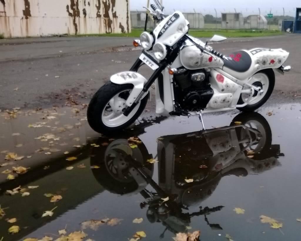 WTTR Poppyscotland Bike Temporary_zps634aaa68