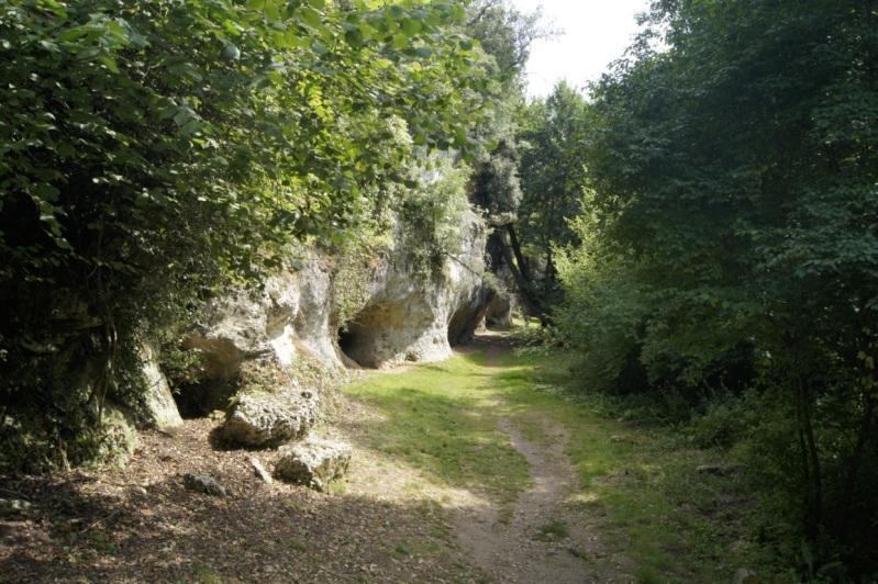 le château de La Roche Courbon Charente Maritime 13aot2012LaRocheCourbon19FILEminimizer