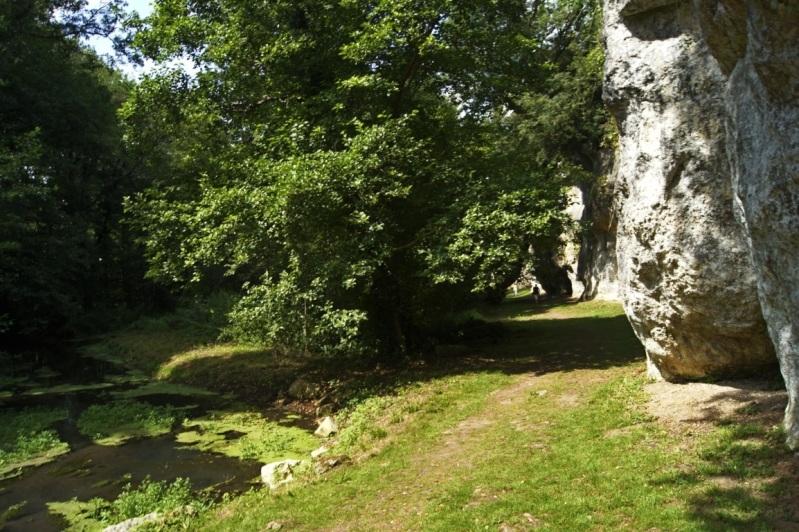 le château de La Roche Courbon Charente Maritime 13aot2012LaRocheCourbon51FILEminimizer