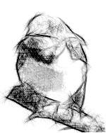 La plus vieille énigme de l'Humanité ( Fayard)  FotoSketcher-38-7