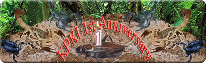 HAPPY 1st ANNIVERSARY KPKI KPKI-a