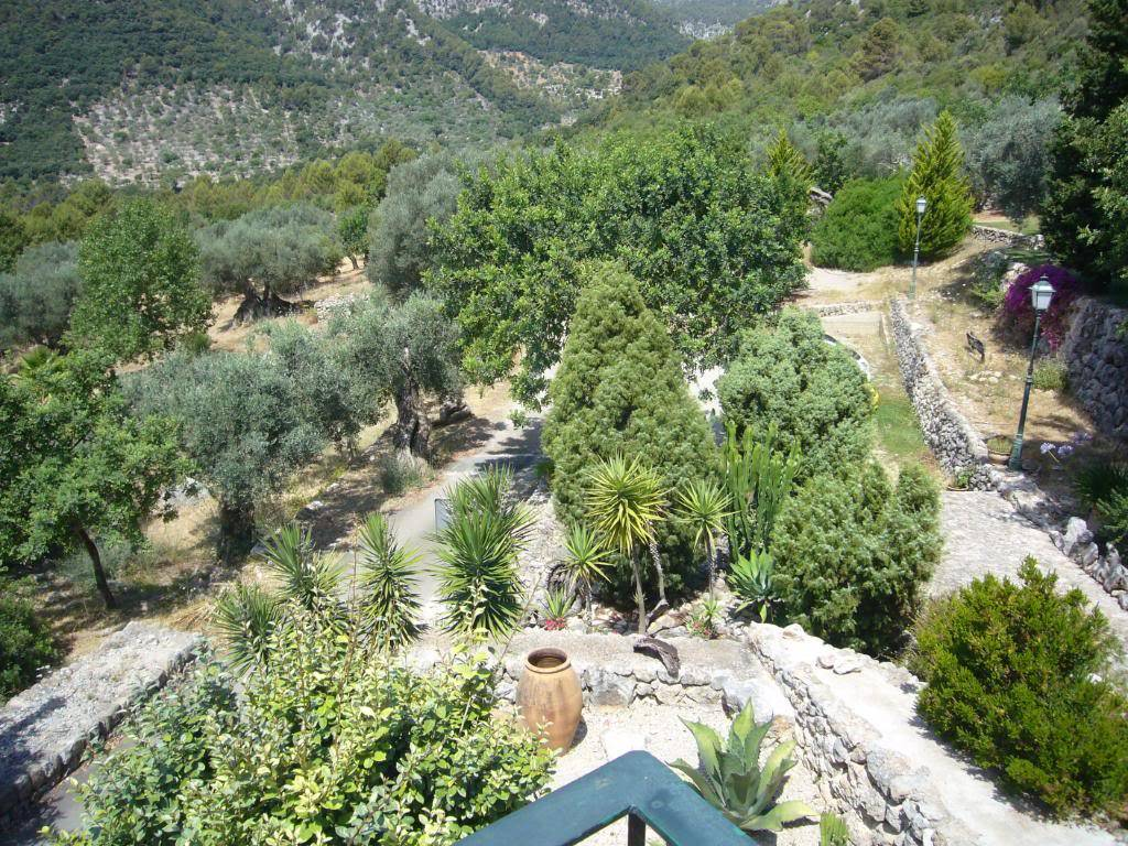 Finca es Castell P1030552