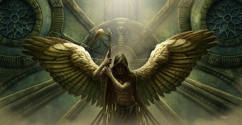 Hình đẹp (show all, no download) Reaper