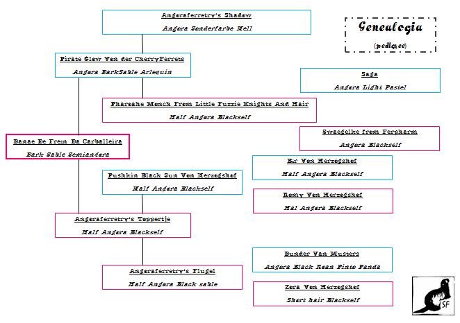*Danae & Drakkar* GenealogiaDanae_zps3ad647c6